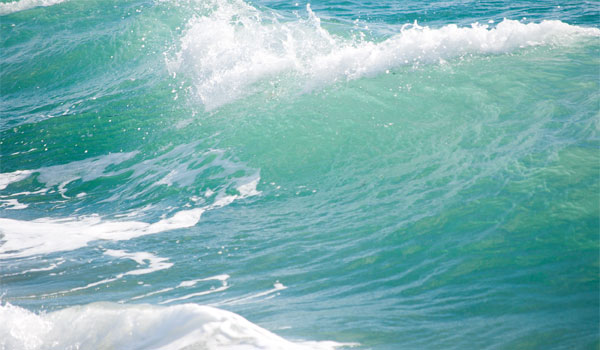Havet ved Hikkaduwa er meget populært