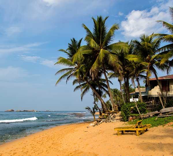 Den flotte strand i Negombo på Sri Lanka