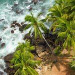 Strand og natur set fra oven