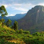 Naturen i bjergene er storslået