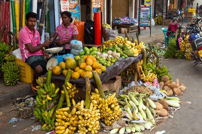 Der bliver solgt frugt ved vejkanten mange steder