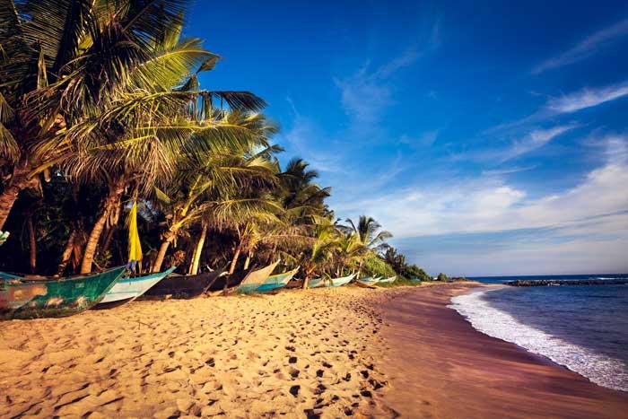 Smuk sandstrand om eftermiddagen