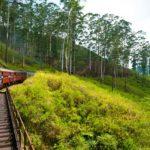 På togtur igennem den smukke natur