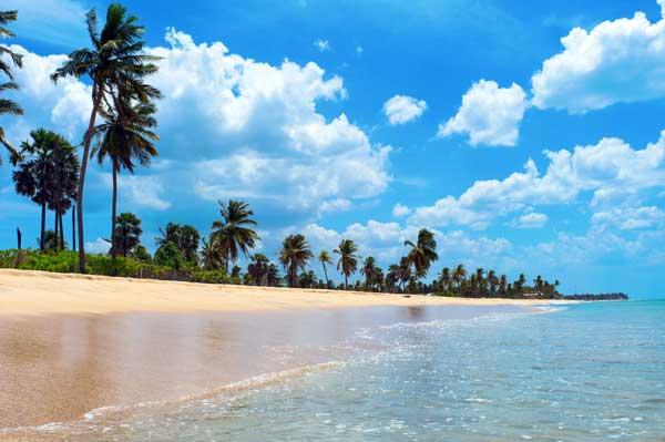 Nilaveli Beach anses af mange for at være Sri Lankas smukkeste strand